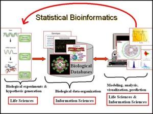 Bio Informatik